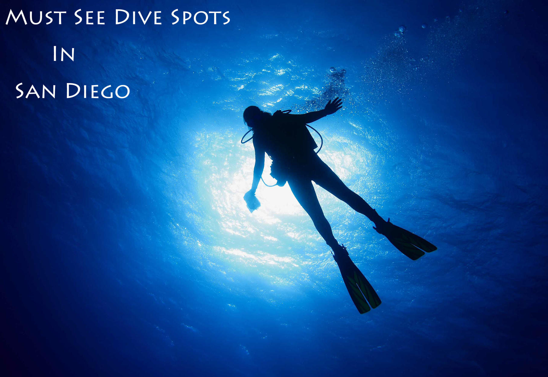 Dive Spots