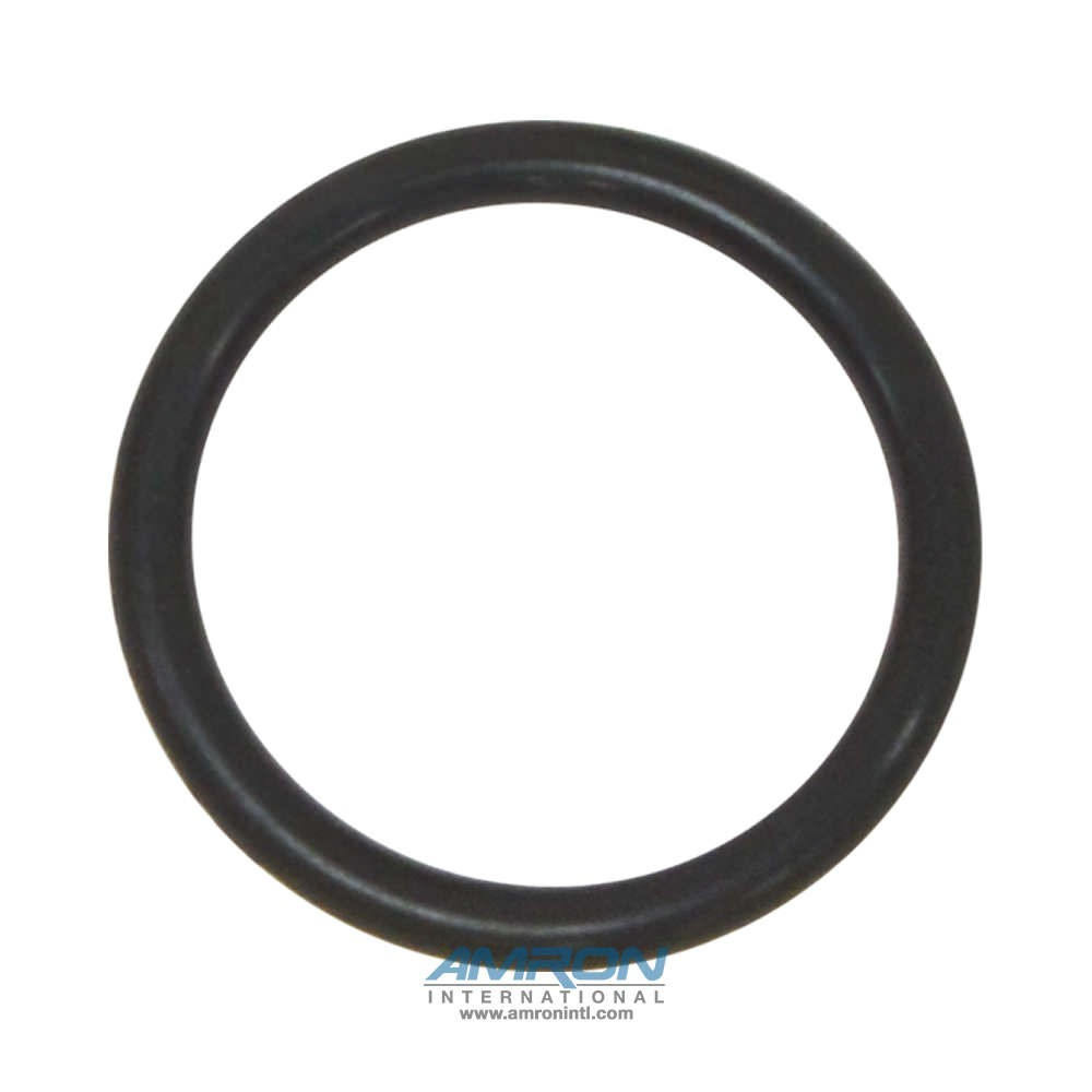 Amron International 220-0001-01 O-Ring for 350M and 450M BIBS Mask