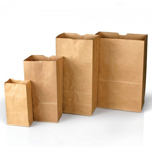Plain Paper Bags Style 4 - 100-Pack
