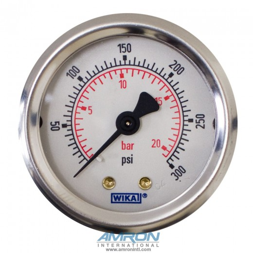 Model 212.53 Bourdon Tube Dry Case Pressure Gauge 2 in. 0-300 PSI 1/8 in. NPT - Center Back Mount - No Flange
