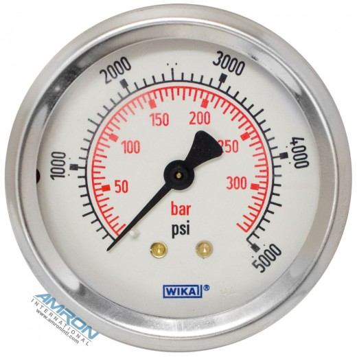 Model 212.53 Bourdon Tube Dry Case Pressure Gauge 2.5 in. 0-5000 PSI 1/4 in. NPT - Center Back Mount - No Flange
