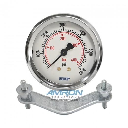 Model 212.53 Bourdon Tube Dry Case Pressure Gauge 2.5 in. 0-6000 PSI 1/4 in. NPT - Center Back Mount - No Flange