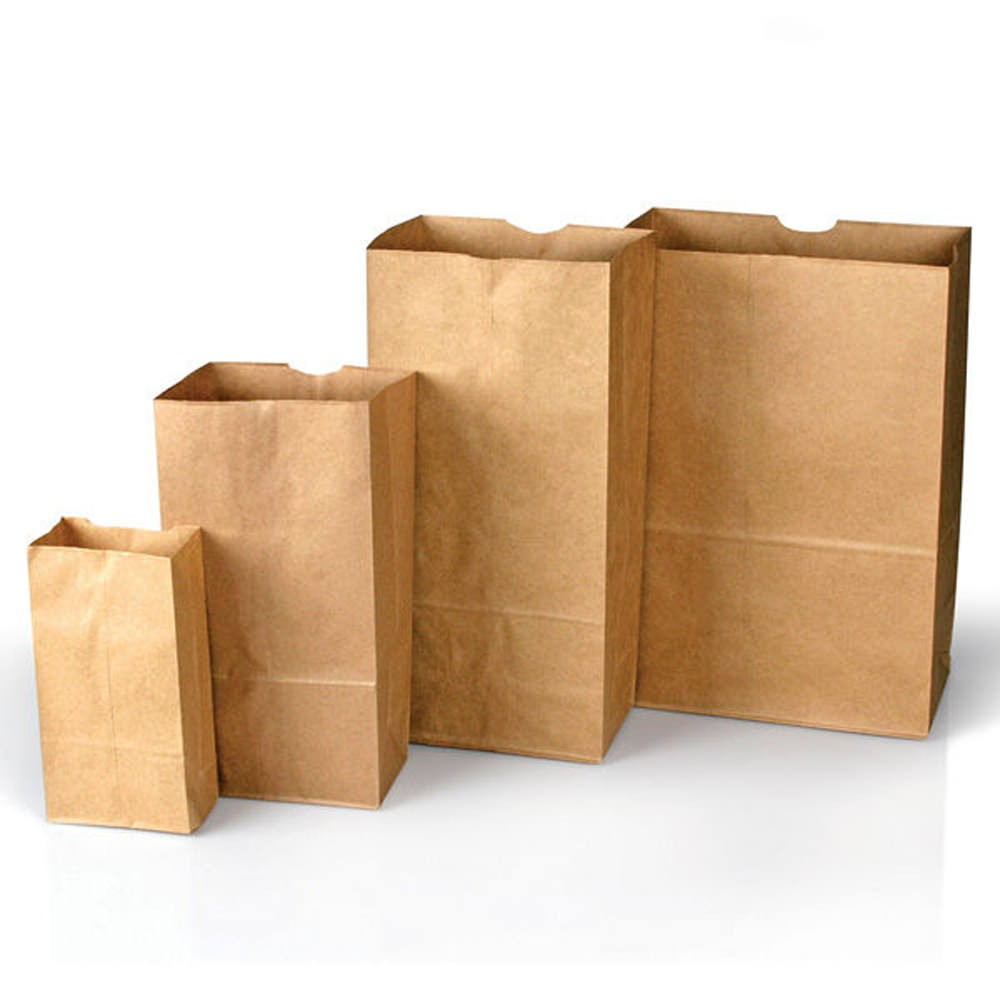 Forensics Source Plain Paper Bags Style 4 - 100-Pack