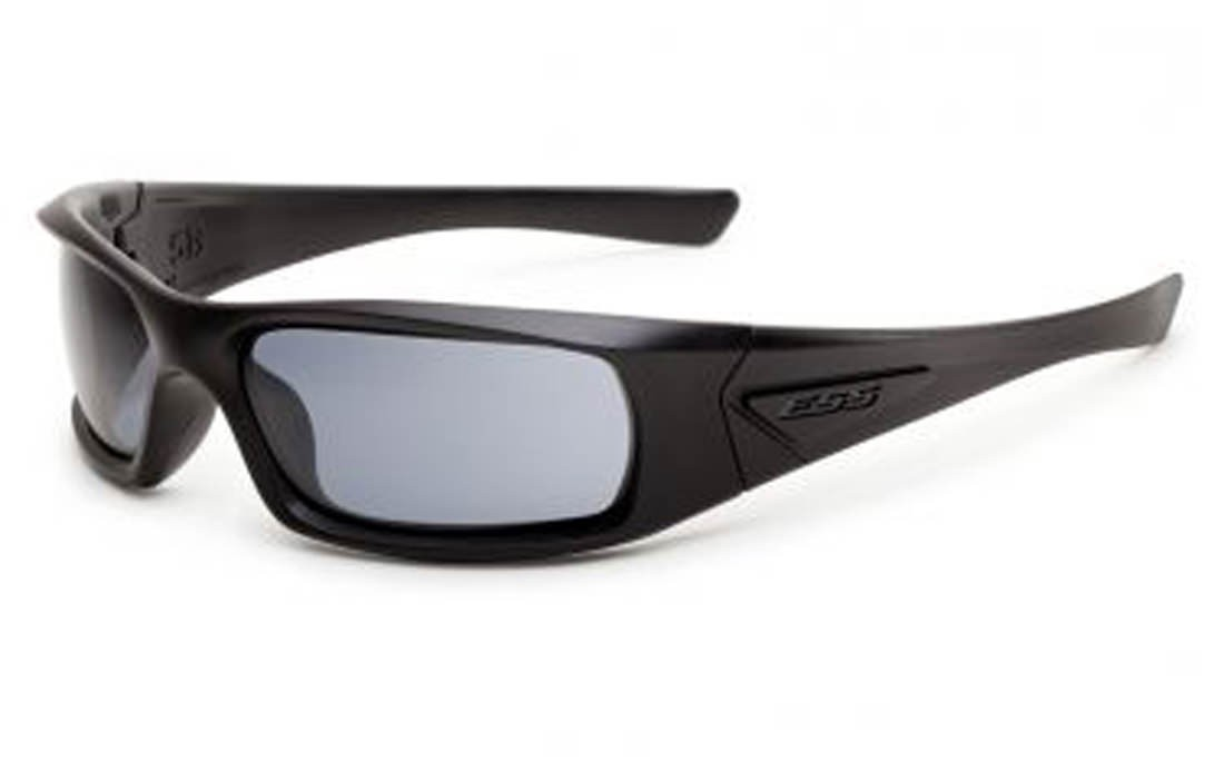 EES 5B Black Frame Smoke Gray Lenses